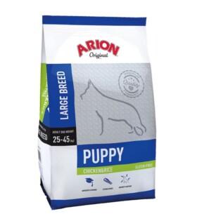 puppy-largebreed-polloarroz