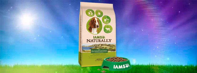 Banner-Iams-naturally-perros